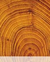 Wood wallpaper for Videocon V1414