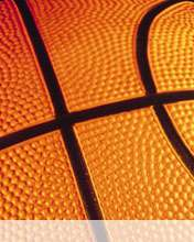 Basketball wallpaper for Videocon V1414