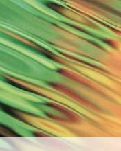 Greenwave wallpaper for Videocon V1414