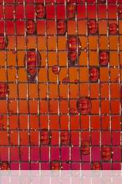 Net wallpaper for HUAWEI Ascend Y