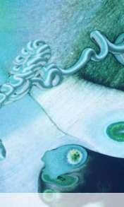 Amobe wallpaper for Videocon V1580