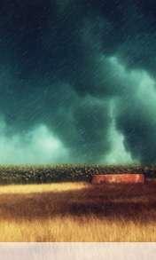 Storm over the field wallpaper for Lemon-Mobiles T39